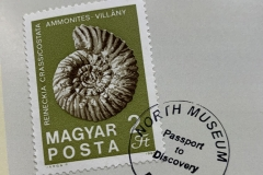 Passport to Discovery Stamp Canceled Ammonite